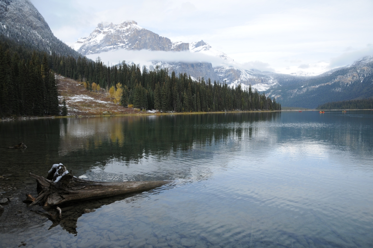 Best of Yoho National Park